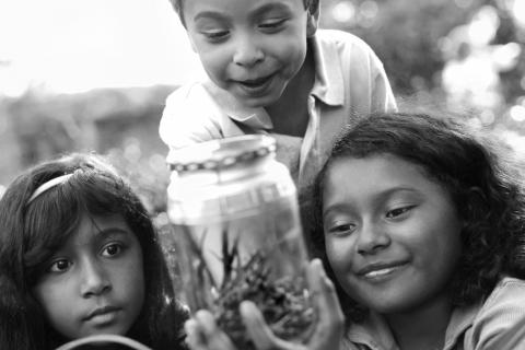 Image of kids with a bug jar