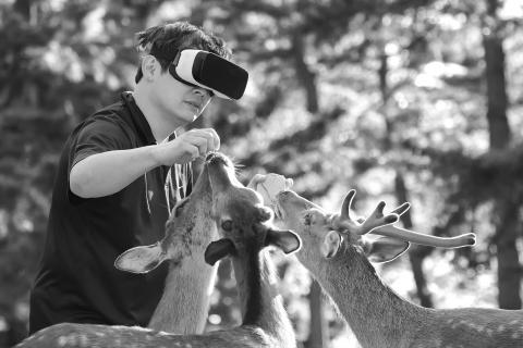 Person interacting with deer wearing virtual reality goggles