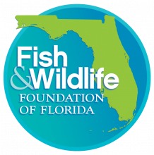 Fish & Wildlife Foundation of Florida logo