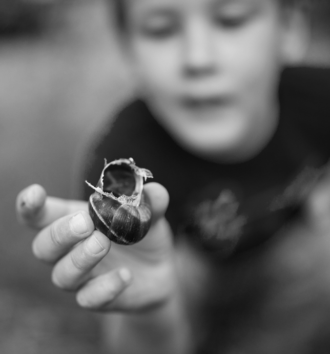 a boy with a snail shell